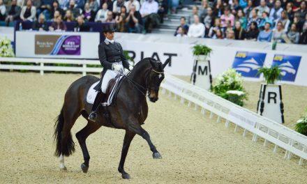 Göteborg Horse Show