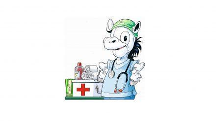 Mulles kluringar –  Sant eller falskt om hästens sjukdomar