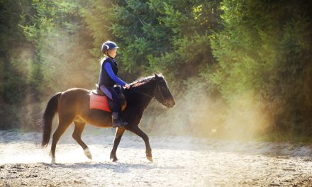Luriga hästord  från A-Ö