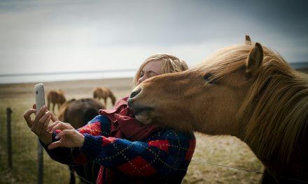 Om hästar hade haft Instagram…