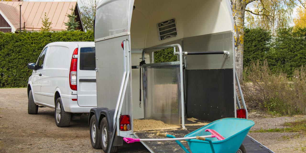 Transportera hästar – Allt du behöver veta