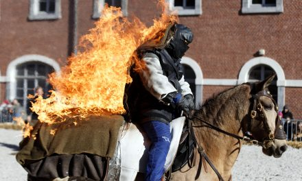 Hästarna som gör stunt!