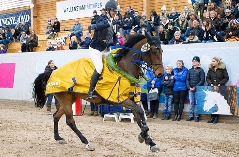 Wilma Marklund – stortalangen från Piteå