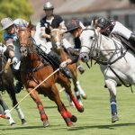 Hur mycket kan du om vanliga och ovanliga hästsporter?