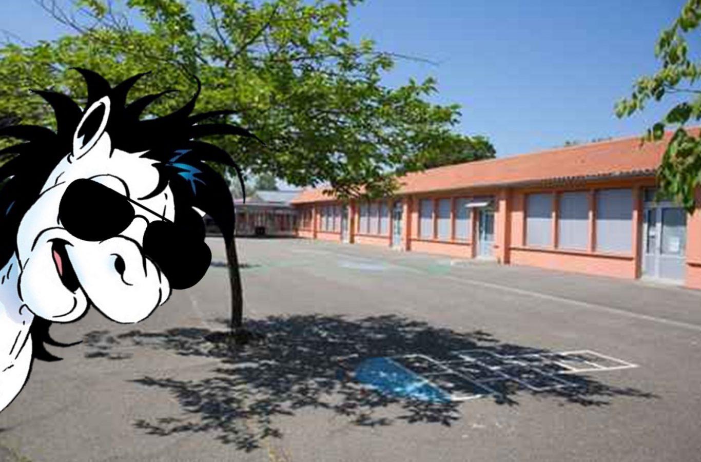 mulle skola