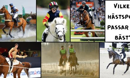 Vilken hästsport passar dig bäst?