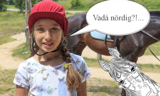 Du vet att du är en hästnörd när…